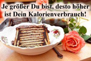 Kalorienberechnung